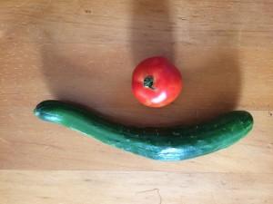 キュウリ&トマト 収穫 2015.6.23