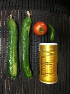 2015.7.17 キュウリ・トマト 収穫
