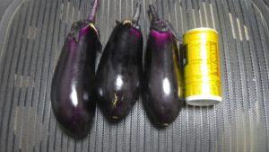 収穫した茄子 市民農園 2016.6.24