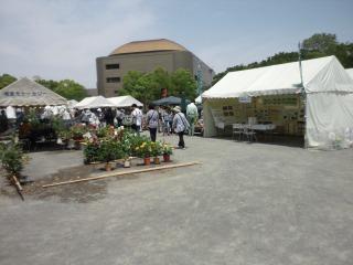 花と緑の市民フェア