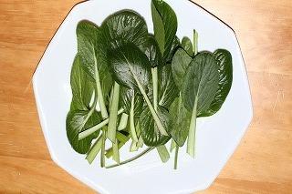 小松菜 収穫 110215