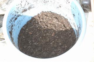 うさぎ糞堆肥 110502