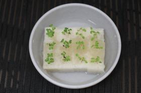 2013-02-25 サニーレタス&小松菜